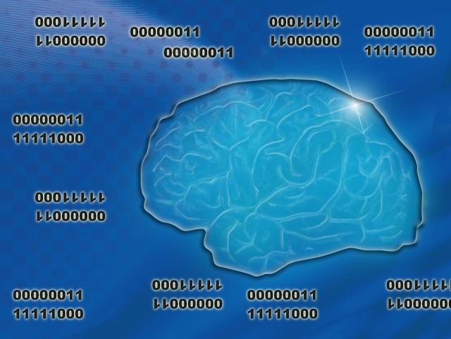 セラサイズ 大脳整体